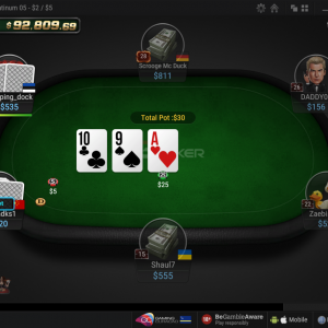 Beginner's Mistakes To Avoid When Playing Online Poker